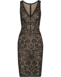 Zac Posen Lace Dress - Lyst