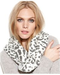 Calvin Klein Leopard Jacquard Shimmer Infinity Scarf - Lyst