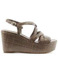 Daniel Footwear - Pons 5P Taupe Leather Woven Flatform Sandal - Lyst