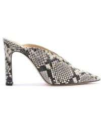 Daniel - Nickels Taupe Reptile Leather Pointed Toe Mules - Lyst