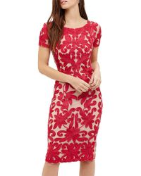 Phase Eight - (d)indra Tapework Dress - Lyst