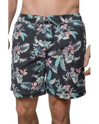 Coast - Soft Hawaiian Board Short - Lyst