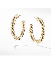 David Yurman - Cable Classics Hoop Earrings In 18k Gold - Lyst