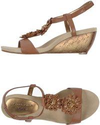 Anne Klein Sandals brown - Lyst