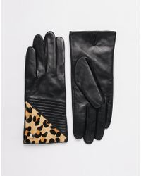 Dune - Imogen Leopard Pony Leather Gloves - Lyst