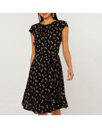 6800a9495d4fb Dorothy Perkins Billie & Blossom Petite Navy Butterfly Print Skater Dress  in Blue - Lyst