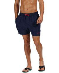 Black Regatta Mawson II Swimming Shorts