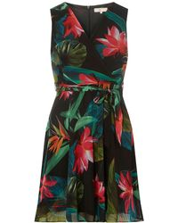 e2d75dcd04d1 Dorothy Perkins Billie & Blossom Tall Black Butterfly Print Skater Dress in  Black - Lyst
