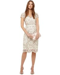 Phase Eight - Oyster Lottie Lace Dress - Lyst