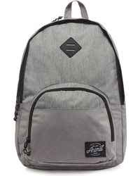 3eea3405b4 Animal Carve Backpack - Lyons Blue Men s Backpack In Blue in Blue ...