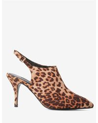d71fa1da907 Dorothy Perkins - Multi Colour Leopard Print Polyurethane Greta Shoe Boots  - Lyst