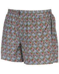 Dolce & Gabbana Chili Peppers Cotton Poplin Boxers - Lyst