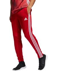 adidas - Tiro 19 Training Pants - Lyst