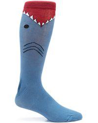 K. Bell - Novelty Shark Crew Socks - Lyst