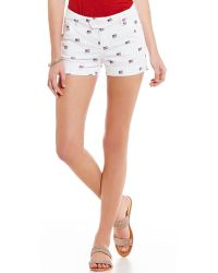 Freestyle - Sateen Embroidered American Flag Shorts - Lyst