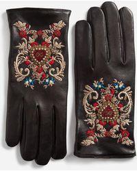 Dolce & Gabbana - Embroidered Gloves - Lyst