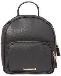 Dorothy Perkins - Black Mini Zip Around Backpack - Lyst