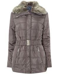 Dorothy Perkins - Tall Grey Luxe Padded Coat. - Lyst