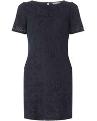 Dorothy Perkins - Petite Navy Lace Shift Dress - Lyst
