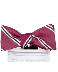 604d78f2c765 Draper James - Collared Greens Martin Bow Tie - Lyst