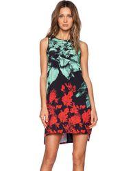 Clover Canyon - Hidden Jungle Dress - Lyst
