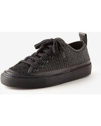 Rachel Comey Brick Sneaker - Lyst