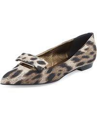 Lanvin Leopardprint Bowbuckle Ballerina Flat - Lyst