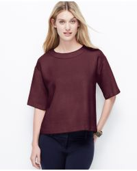 Ann Taylor Drop Shoulder Tee - Lyst