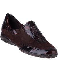 Vaneli For Jildor Anica Flat Sneaker Moka Brown Suede - Lyst