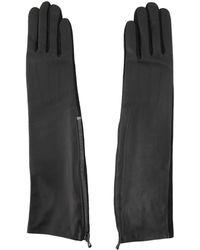 Lanvin Long-Glove - Lyst