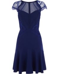 Coast Devine Lace Dress - Lyst
