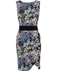 Coast Devina Print Dress - Lyst