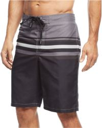 Calvin Klein Gradual Striped E-Board Swim Trunks - Lyst