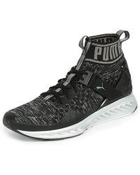 Puma Select - Ignite Evoknit Nc Sneakers - Lyst