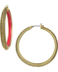 Sam Edelman Etched Metallic Hoop Earrings - Lyst