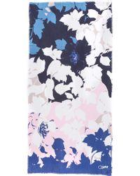 Diane von Furstenberg | Grace Floral Scarf - Large Denim Floral Scarf | Lyst