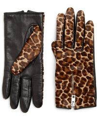 Rag & Bone Zippered Leopard-Print Calf Hair Gloves animal - Lyst