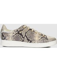 31d3f2daab Geox - Sand Faux Snakeskin Leather Trainers. Available Online Only. - Lyst
