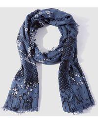 Caminatta - Blue Printed Foulard - Lyst