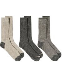 Anonymous Ism - Rib Crew Sock - 3 Pack - Lyst