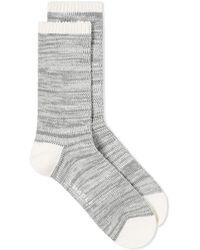 MAPLE - Hikisoroe Sock - Lyst