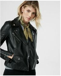 Express - Petite Faux Leather Quilted Moto Jacket - Lyst