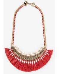 Express - Puka Shell Fringe Bib Necklace - Lyst