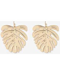 Express - Palm Tree Leaf Earrings - Lyst