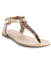 Charles By Charles David Khaki Leather Mearilena Leopard Hair Accent T-strap Sandals - Lyst