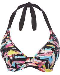 Freya | Venice Beach Padded Halter Bikini Top | Lyst