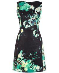 Coast Salisa Printed Dress - Lyst