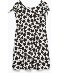 Zara Printed Dress - Lyst