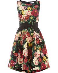 Untold Piquet Floral Dress - Lyst