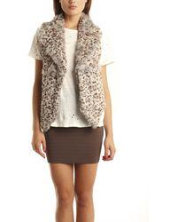 Cut25 Cut 25 Rabbit Fur Vest In Cheetah - Lyst